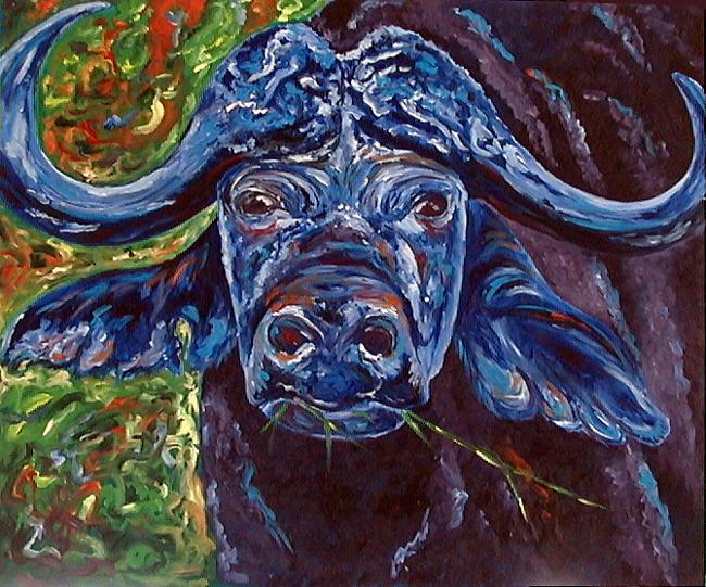 Kaffer Buffalo